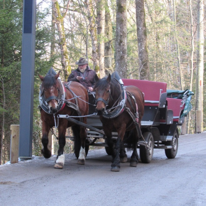 How to get to Neuschwanstein Castle: horse carriage